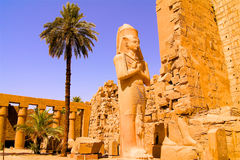 Statue à Louxor Egypte Image libre de droits
