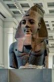 Statue ägyptischen Königs Ramesses II im britischen Museum, London lizenzfreie stockfotos