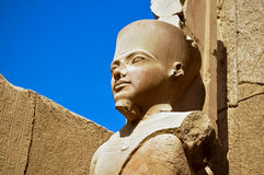 The statue of Amun Re in Luxor. A statue of Amun Re in the Temple of Amun in Karnak, Luxor, Egypt Stock Images