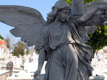 Statue of an angel Royalty Free Stock Photography