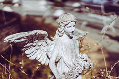 Statue of an angel with wings in the sunshine. Stock Photo