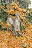 Statue of an angel in yellow leaves near Sedlec Ossuary Royalty Free Stock Photos