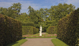 Statue of Apollo in alley  the regular Park.Tsarskoye Selo.Pushkin.Russia. Royalty Free Stock Photo