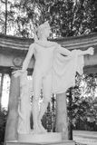 Statue of Apollo Belvedere. The statue of Apollo Belvedere a copy from the original sculptor Leohar in the ruins of the Colonnade of Apollo in the Pavlovsk park Stock Photos