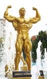 Statue of Arnold Schwarzenegger. The statue of Arnold Schwarzenegger in front of a big fitness center. Location:  Timisoara, west Romania Royalty Free Stock Photos