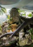 Statue aux Aztèques photographie stock