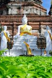 Statue in Ayutthaya Stock Images