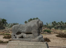 Statue of Babylonian lion in Babylon ruins Iraq. Statue of Babylonian lion in Babylon ruins, Iraq stock photos