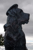 Statue of Bamse St Bernard Royalty Free Stock Image
