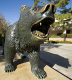 Statue of Bear. Statue of a bear on a campus Stock Photography