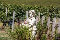 Statue of a boy holding a basket with grapes on the background of vineyards in the Saint Emilion region. France royalty free stock photography