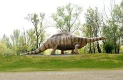 Statue of Brontosaurus Dinosaur Animal at the Park Royalty Free Stock Image