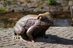 Statue of a bronze frog in the central park Stock Images