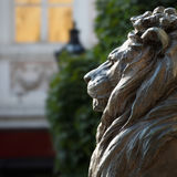 Statue of bronze lion side view Stock Photo