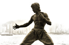 The Statue of Bruce Lee. Statue of the legendary martial arts star Bruce Lee along the waterfront at Tsim Sha Tsui, Hong Kong stock images