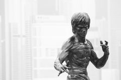 Statue Bruce Lee Royalty Free Stock Photography