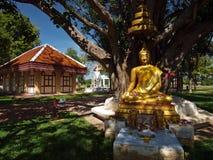 Statue of Buddha Stock Photo
