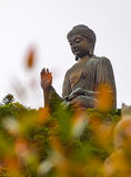 Statue of Buddha in Hong Kong. Statue of giant Buddha in Hong Kong with orange blured leaves on the foreground stock photo