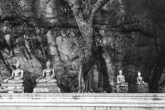 Statue of Buddha in the middle of temple in the mountain. Picture was shot in black and white. Stock Photography