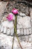 Statue of Buddha's feet Stock Photos