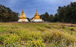 Statue buddha sit outdoor , Lamphun, Thailand Royalty Free Stock Photography