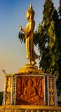 Statue of the Buddha . stock image