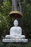 Statue of Buddha under tree at Wat umong mahathera chan. Scene from around Chiang Mai Province, Northern Thailand royalty free stock photography