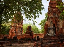 Statue of Buddha, Wat Mahathat Temple, Ayutthaya, Thailand Stock Photography