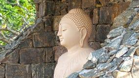 Statue cachée de Bouddha Photo libre de droits