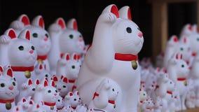 Statue Cat at Gotokuji in Tokyo stock video