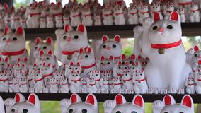 Statue Cat at Gotokuji in Tokyo stock footage