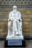 Statue of Charles Darwin Stock Photo