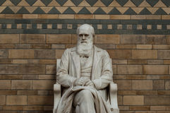 Statue of Charles Darwin. The creator of the theory of evolution Royalty Free Stock Photos