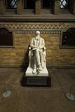 Statue of Charles Darwin in the Science Museum Royalty Free Stock Photos