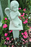 Statue child angle among pink flower. Royalty Free Stock Photography