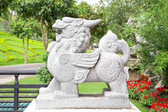 Statue china lion garden guardian front of place in china Stock Image