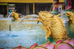 Statue of Chinese dragon fish spraying the water at the fountain. In Chinese temple stock photos