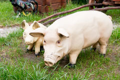 Statue of couples pigs decorate the yard. Stock Images
