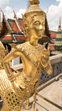 Statue d'or d'ange Photo stock