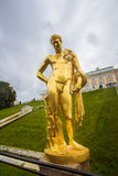 Statue d'or dans Peterhof photographie stock