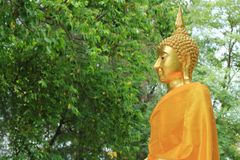 Statue d'or de Bouddha dans le jardin tropical Photos libres de droits