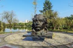 Statue d'Einstein au rivage de lac photo libre de droits