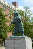Statue d'ours de Brown, Brown University, Providence, Etats-Unis Photos stock