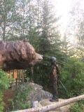 Statue d'ours et de fille photographie stock