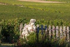 Statue d'un gar?on tenant un panier avec des raisins sur le fond des vignobles dans la r?gion de Saint Emilion images libres de droits