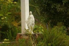 Statue d'une vierge dans le midlle d'une forêt Photos libres de droits