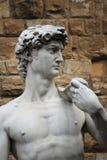 Statue of David Royalty Free Stock Photo