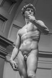Statue of David, Florence, Italy Stock Photos