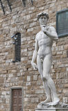 Statue of David by Michelangelo in Florence, Italy Royalty Free Stock Photo
