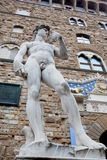 The statue of David Royalty Free Stock Images
